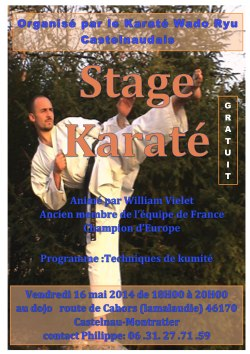 stage kumité dirigé par William Vielet